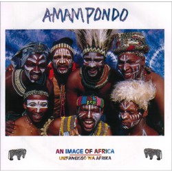 Amampondo - An Image of Africa