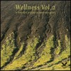 Wellness vol.2 - A beautiful journey to inner relaxation (DVD)