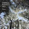 Gabriele Pezzoli Trio - Viljandi